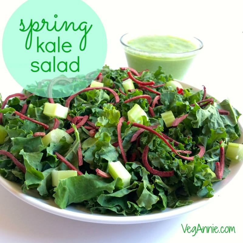 spring kale salad, vegan kale salad, gluten-free kale salad, paleo kale salad, healthy kale salad, oil-free kale salad, kale-beet-celery salad, vegetarian kale salad, fat-free salad dressing