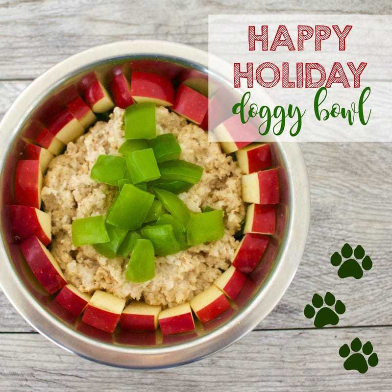 Healthy Holiday Doggy Bowl for your favorite pup! (Vegan, Gluten-Free, Oil-Free)