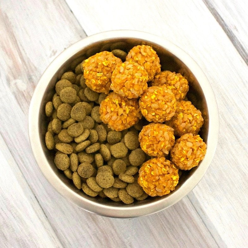 Healthy Homemade Dog Food: Pumpkin, Rice, 'N Oat Bites! (Vegan, Gluten-Free)