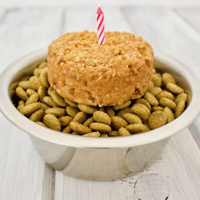 Peanut Butter Pupcakes! Healthy, vegan, gluten-free dog treats that are super easy to make.