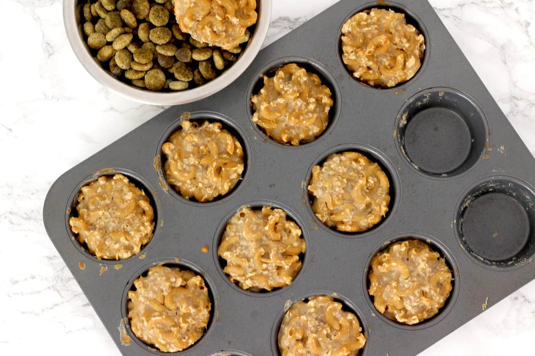 Healthy Homemade Dog Treats: Macaroni Bites! (Vegan, Gluten-Free, Oil-Free)