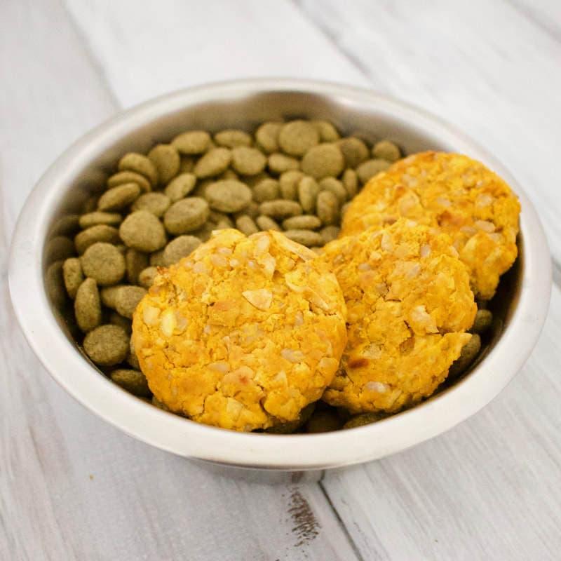 Healthy Homemade Dog Treats: Pumpkin Chickpea Patties (Vegan, Gluten-Free, Oil-Free)
