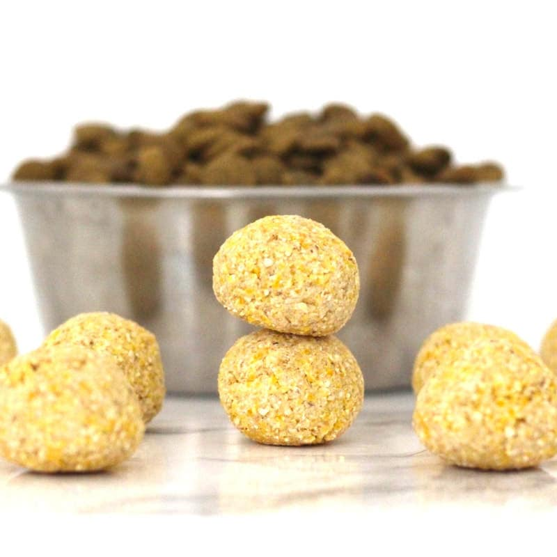 3 Ingredient Cornbread Bites - the perfect, easy & healthy dog treat! Vegan, gluten-free, and oil-free.